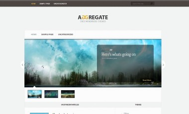 WordPress Theme – Aggregate